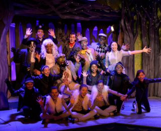 Review: The Adventures of Mr Toad, National Children's Theatre